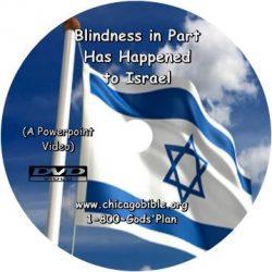 p-1343-Blindness_In_Par_4943d28aab124.jpg