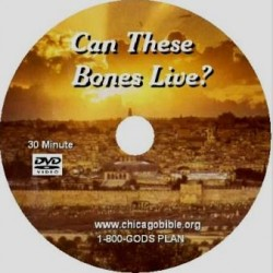 p-1180-Can_These_Bones__51e6d04c44ce5.jpg