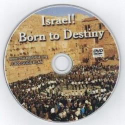 p-1397-Israel_Born_to_D_53ee6853db778.jpg